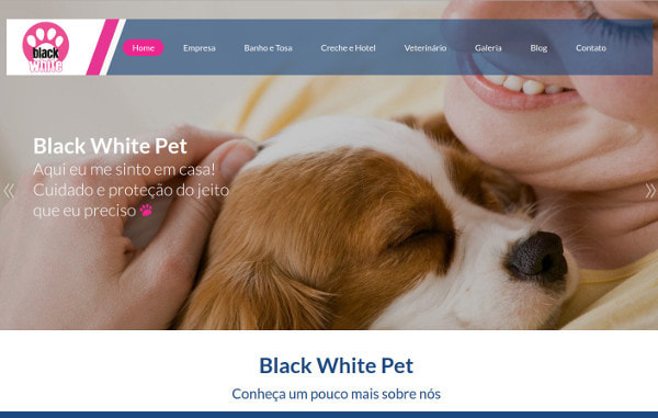 Estudo de Caso Black White Pet e Linking Sites