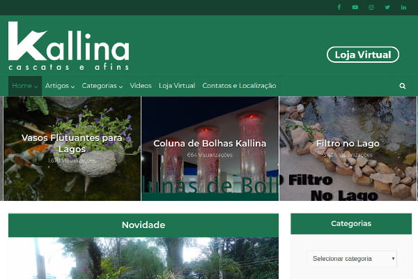 Estudo de caso Kallina e Linking Sites